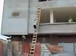 trabajador sube escalera alta y luego se lanza con una cuerda