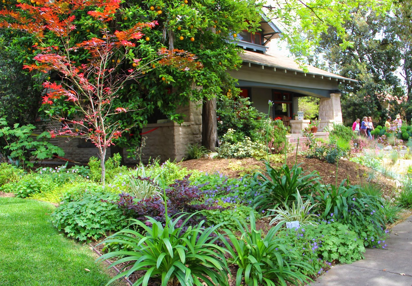 A Very Good Life More South Pasadena Is Beautiful Gardens