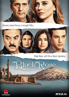 Rosa Negra Capitulos