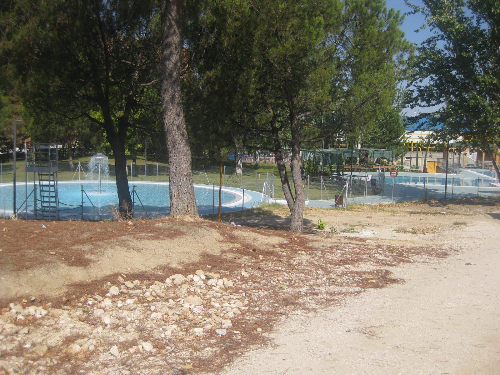 Los verdes grupo verde alcorc n que pena la piscina los for Piscinas en alcorcon