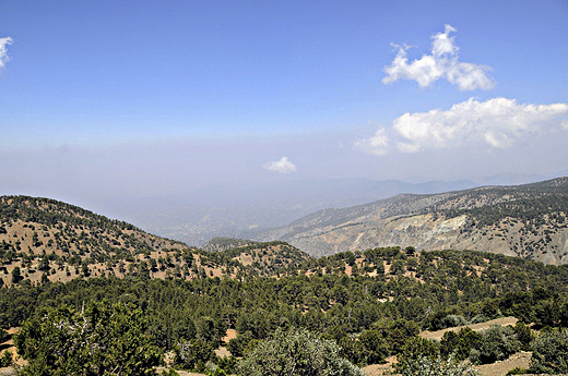 Looking north from the peak of Mt. Olympus, Troodos Mountains, Cyprus.