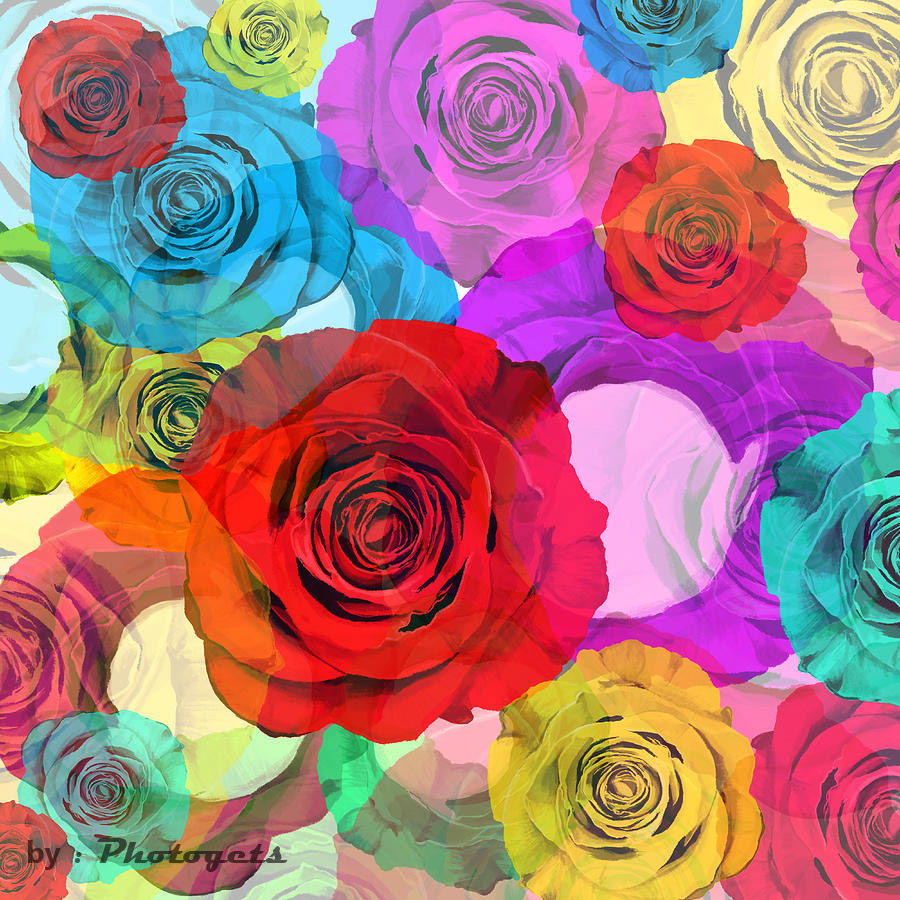 Colorful Flower Design Photograph