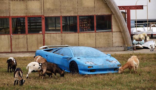 Abandoned Supercars Race Cars