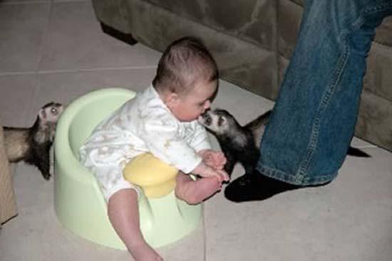 7 Δείτε:Σοκαριστικές εικόνες με παιδιά και επικίνδυνα ζώα!!!