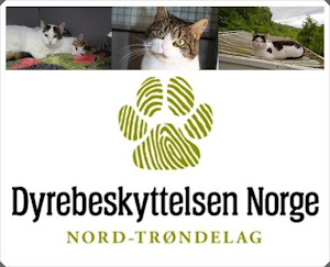 Animal shelters Norway