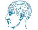Curso online de Neuropsicología Clínica