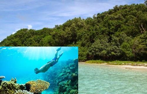 Wisata Pulau Peucang Ujung Kulon