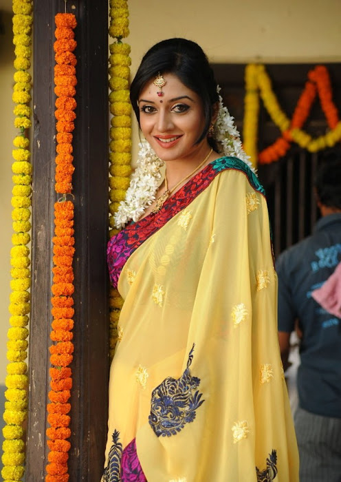 vimalaraman saree hq nowatermark photo gallery