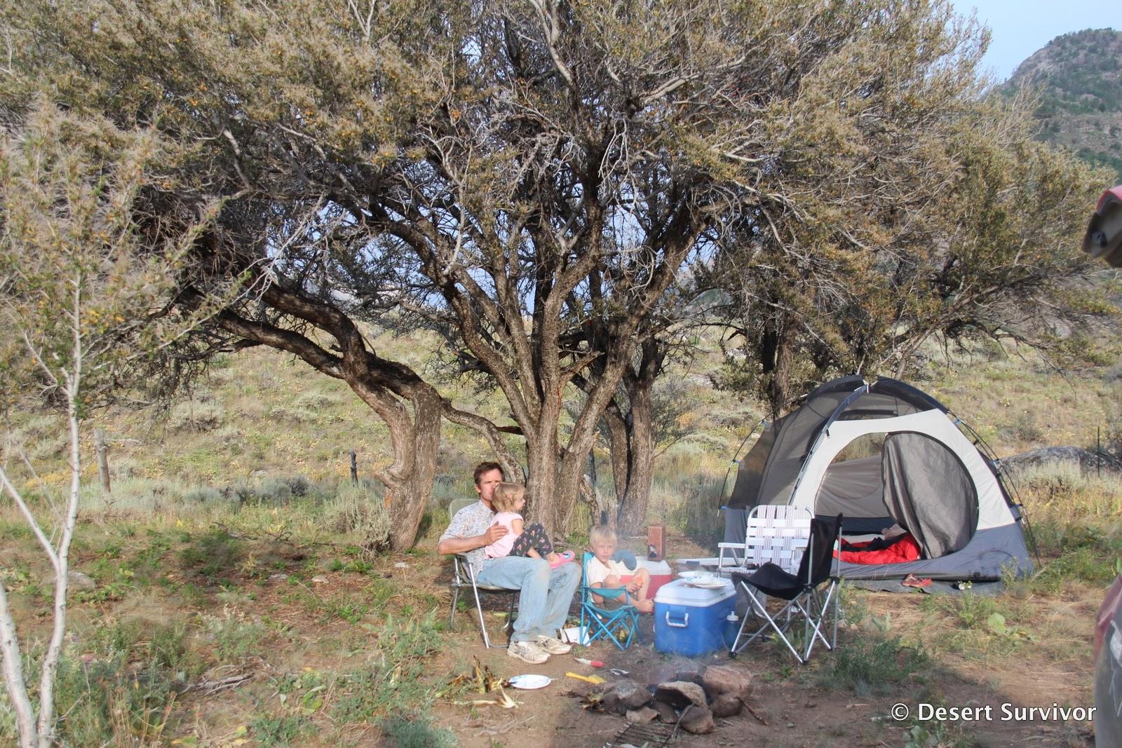 desert survivor desert survivor u0027s get out and camp challenge