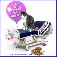 PURRS FOR NERISSA