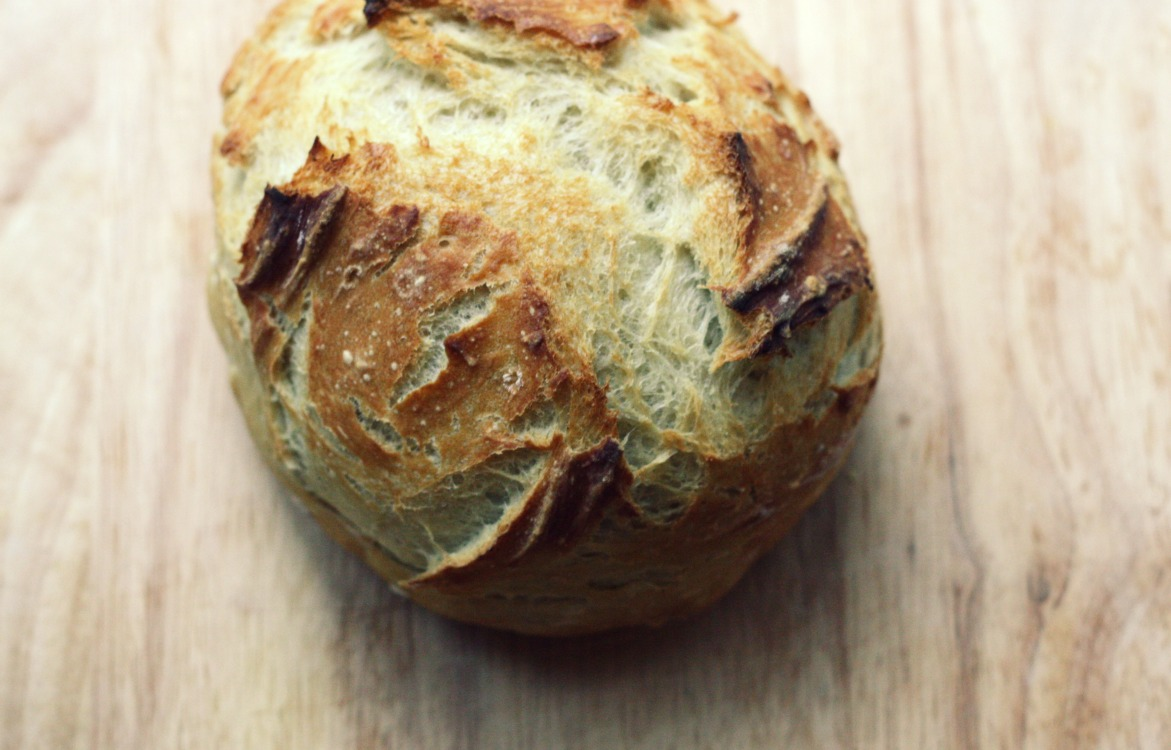 The Vanilla Bean Blog | no knead bread