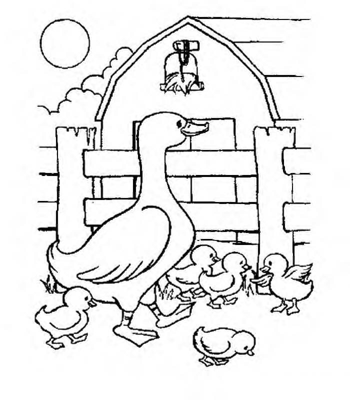 As crianças e adultos quando lembram da fazenda, logo recordam dos