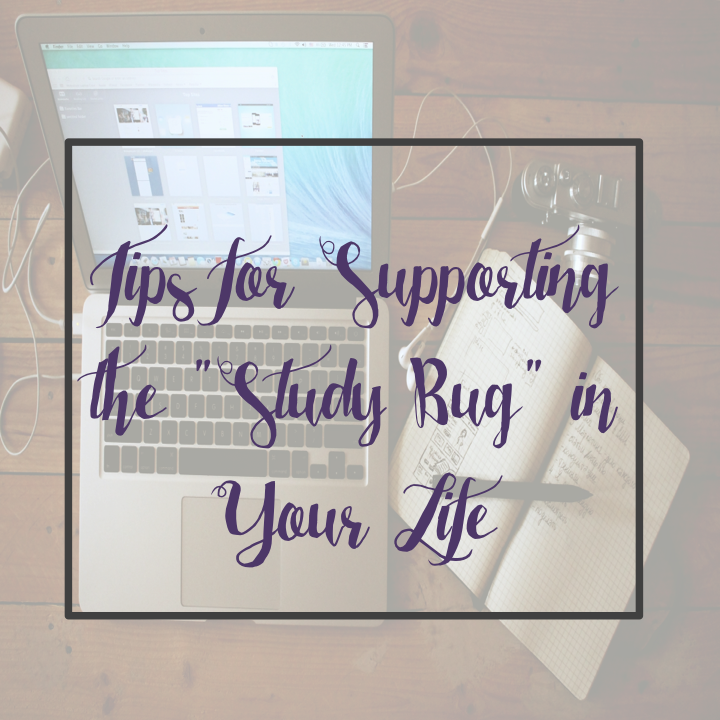"""Wednesday Wisdom:  Supporting the """"Study Bug"""" in Your Life"""
