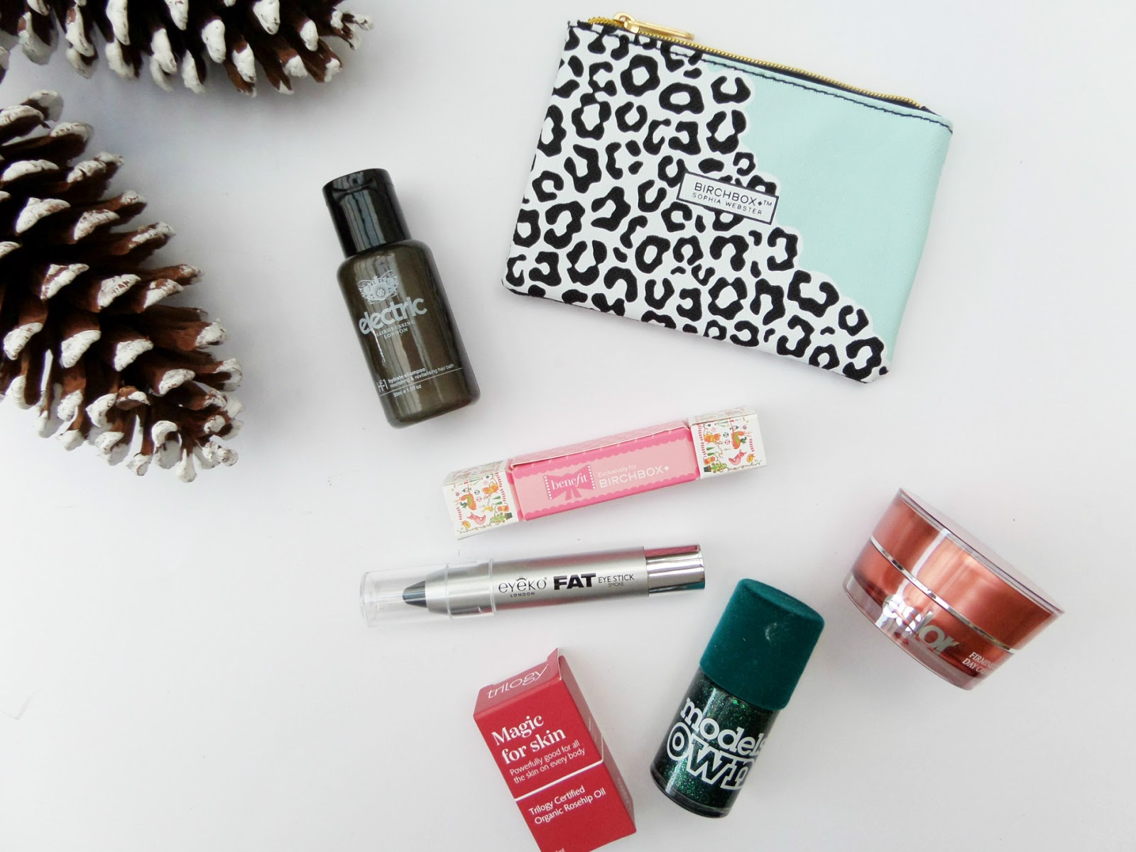 December Birchbox | Sophia Webster Edition Contents