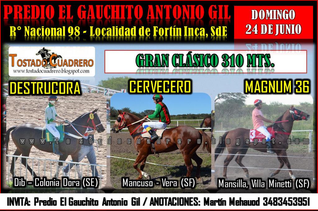 INCA CLASICO 310