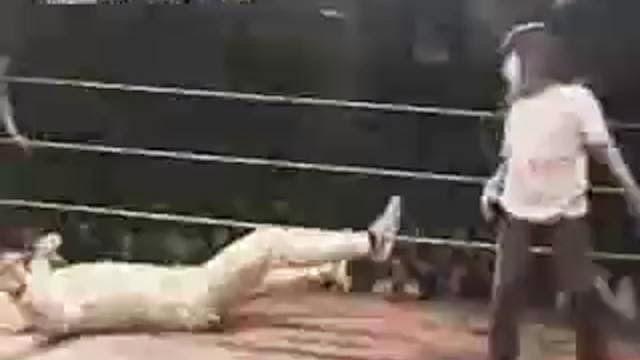 Enfants lutteurs ninja, combattre des enfants sur un ring
