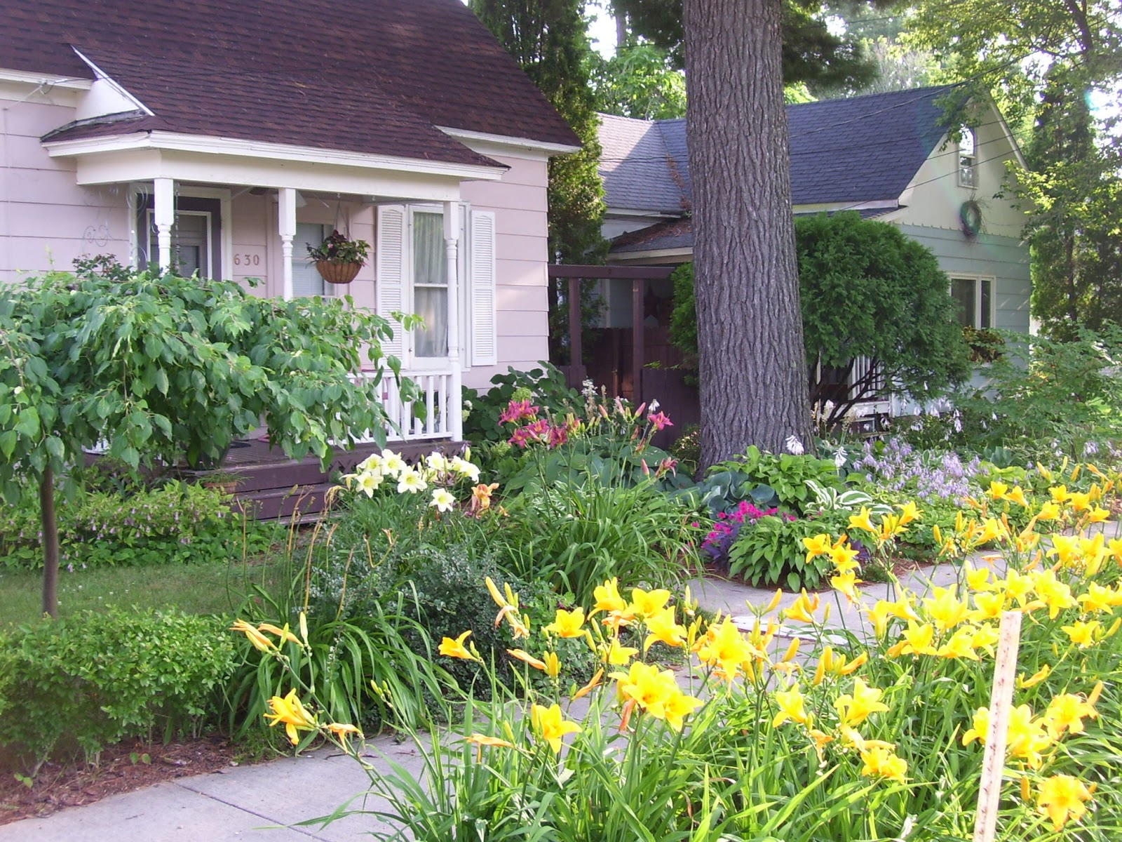 Talking to plants lawnless front yards strange trend or for Small plants for front yard