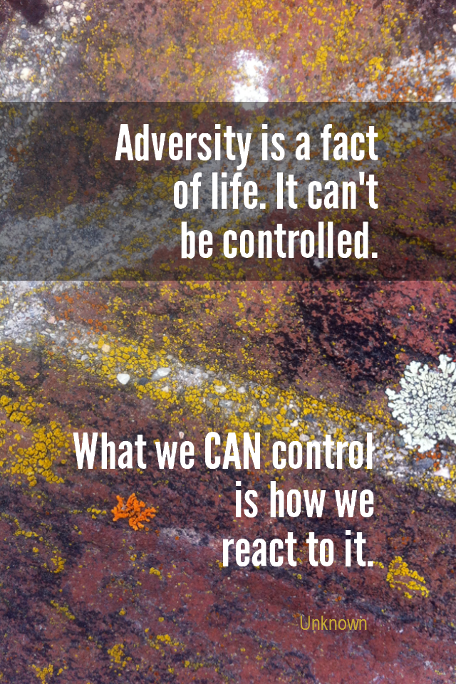 visual quote - image quotation for ACCEPTANCE - Adversity is a fact of life. It can't be controlled. What we can control is how we react to it. - Unknown