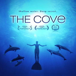 The Cove documentary - Awareness for killings in Taiji, Japan