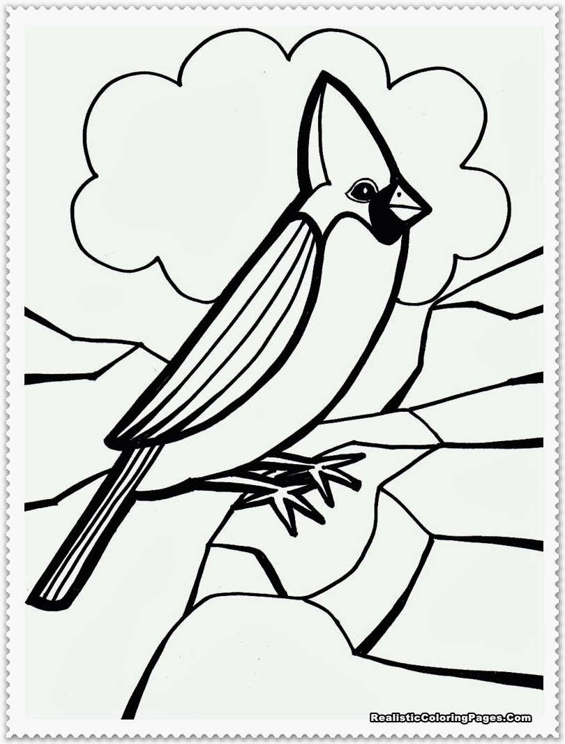 Free realistic birds coloring pages
