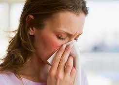 obat tradisional penyakit sinusitis