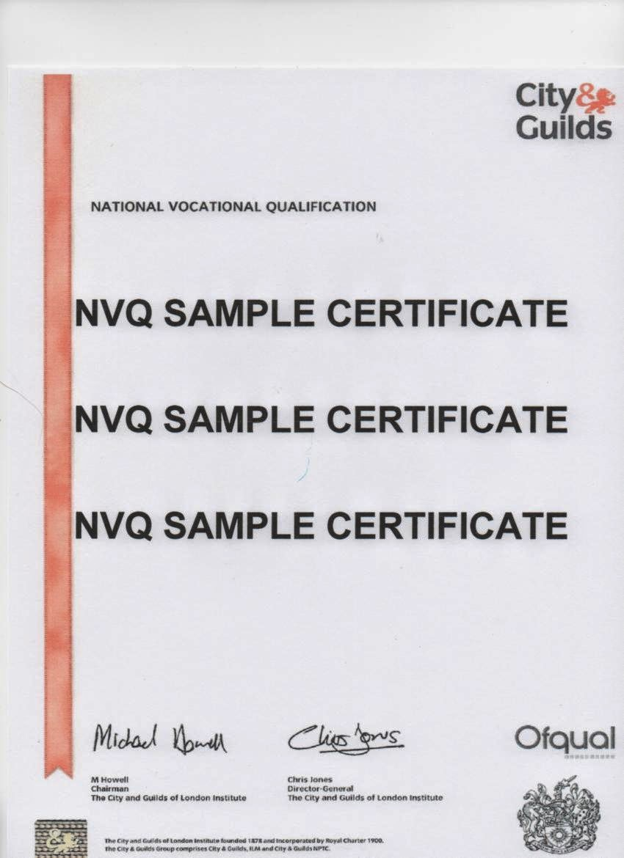 Pin fake gcse certificates kamistad celebrity pictures for Gcse certificate template