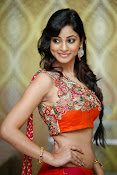 Shilpi Sharma Photos at Trisha Pre launch fashion Show-thumbnail-3