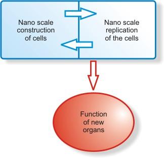 ethics of nanotechnology essay