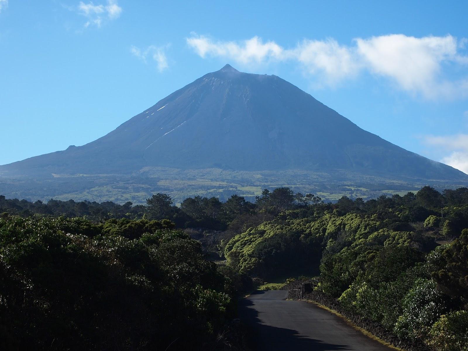 Trail Map - Pico Mountain