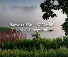 Bagsværd Sø – Summer