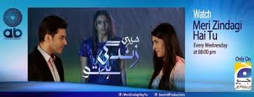 Meri Zindagi Hai Tu Episode 15 - ARY Digital - 20th December 2013 HQ