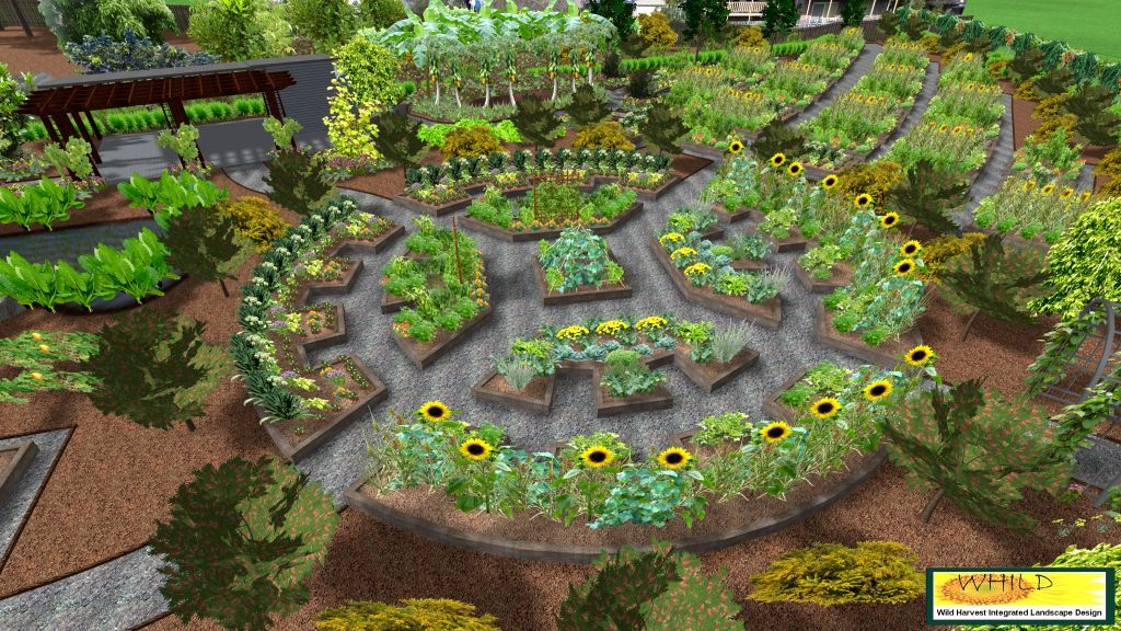 Permaculture garden design plans images for Garden layout