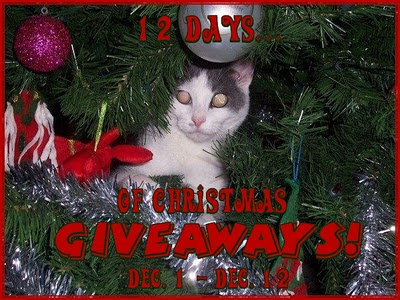 12 Days of Christmas Giveaways: 40 Giveaway Event!