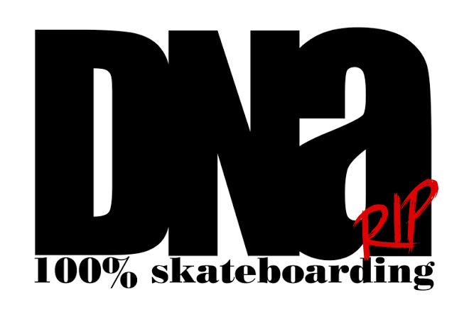 DNA skateboard store.