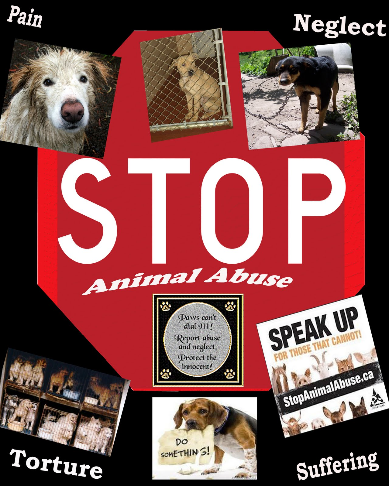 Animal abuse posters - photo#11