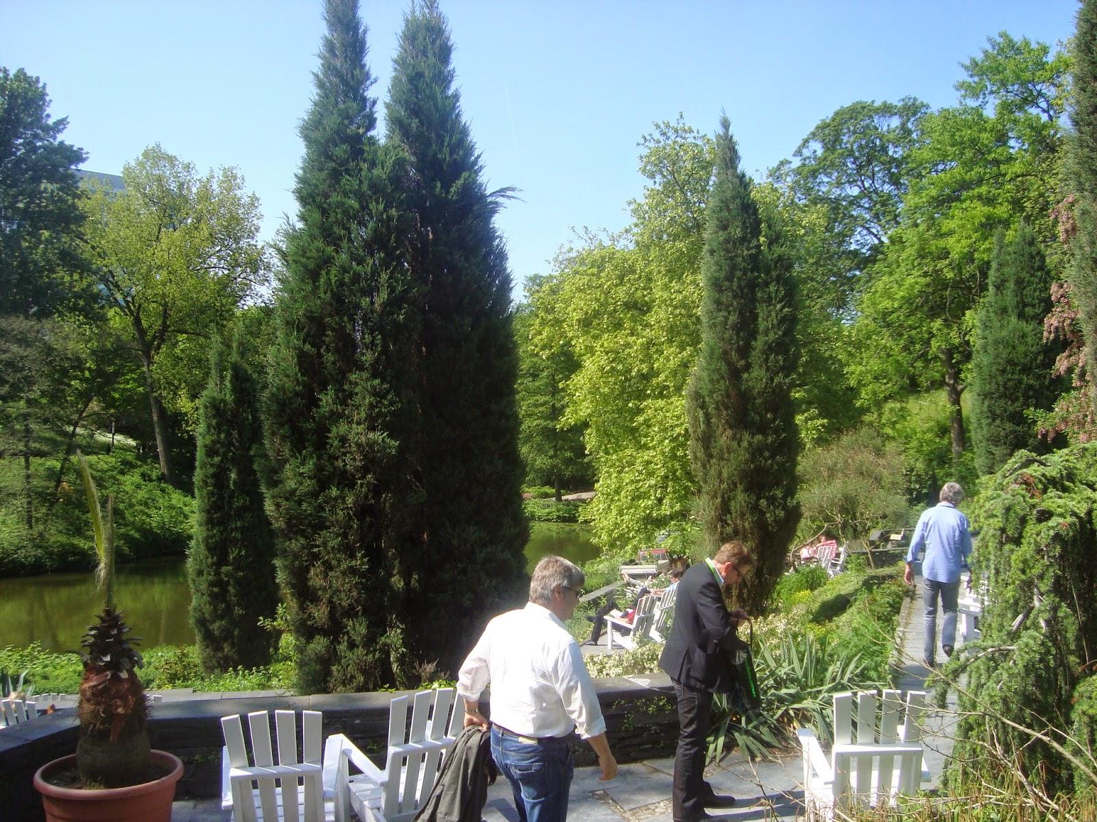 μεσογειακος κήος