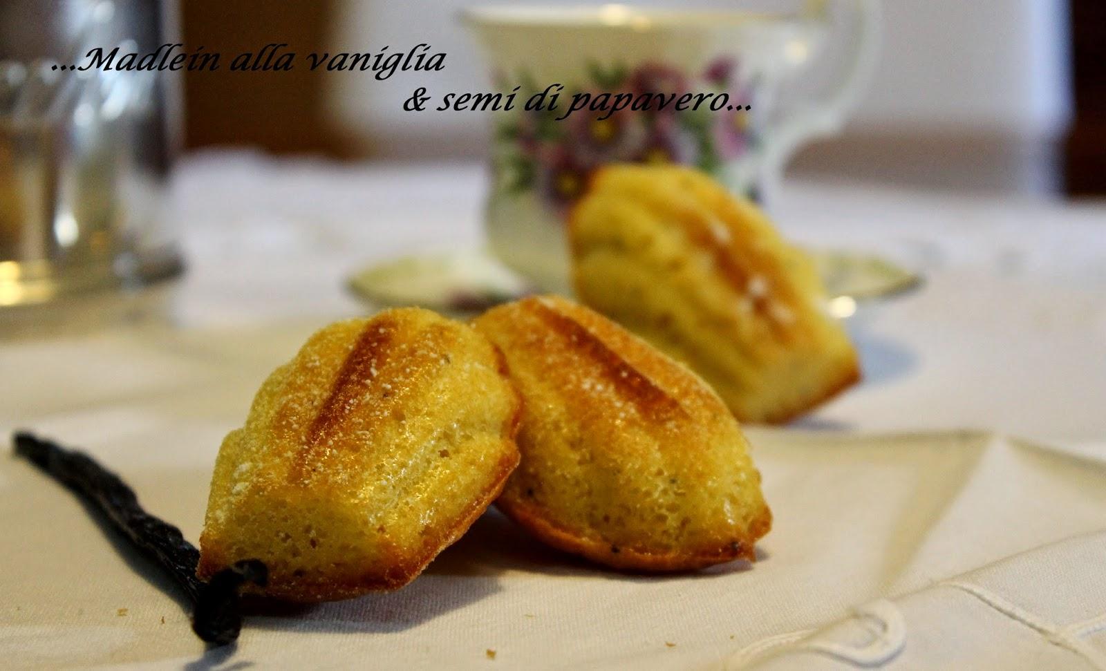 Madeleine alla vaniglia e semi di papavero