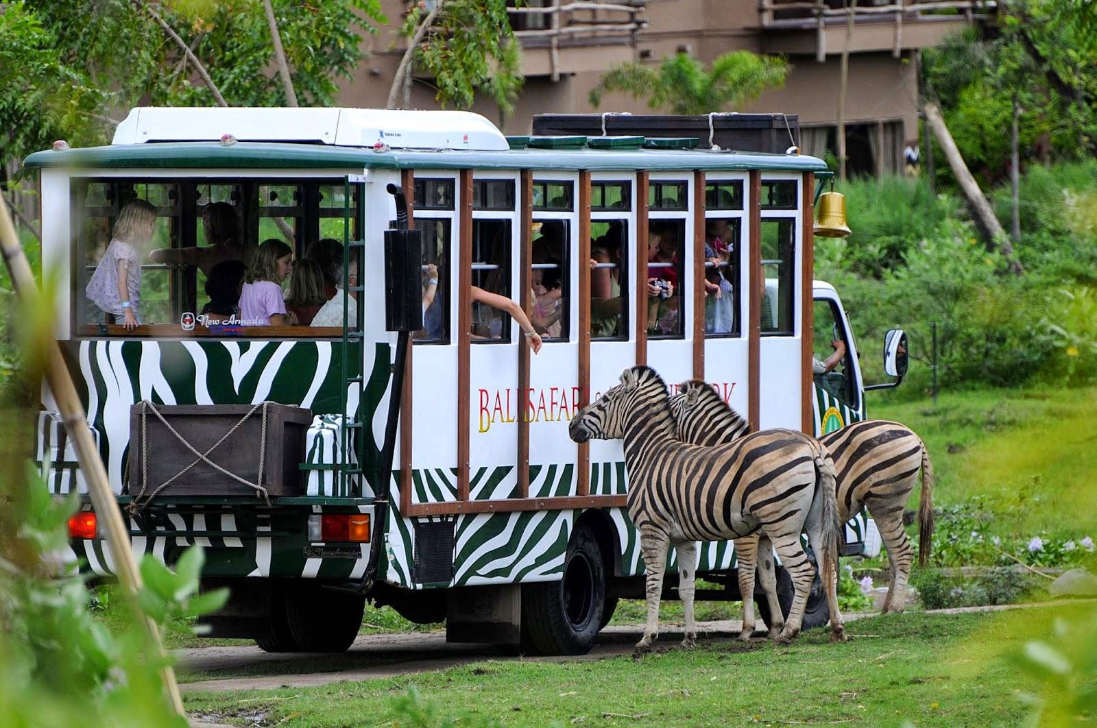 Bali safari and marine park - safari journey