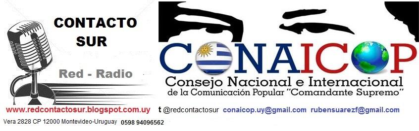 Contacto Sur-Conaicop