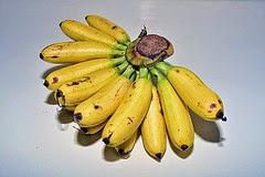 buah pisang untuk penyakit jantung, buah pisang untuk ibu hamil, pisang untuk diet