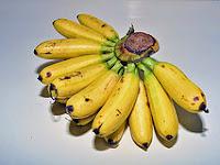 Kandungan Nutrisi Dan Khasiat Pisang
