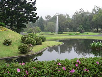 gambar taman kebun raya