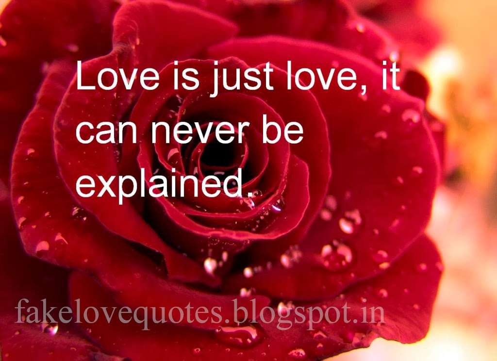 Valentine day special for you mind free and motivation for I love you quotes for valentines day