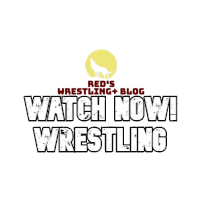 Watch Now Wrestling
