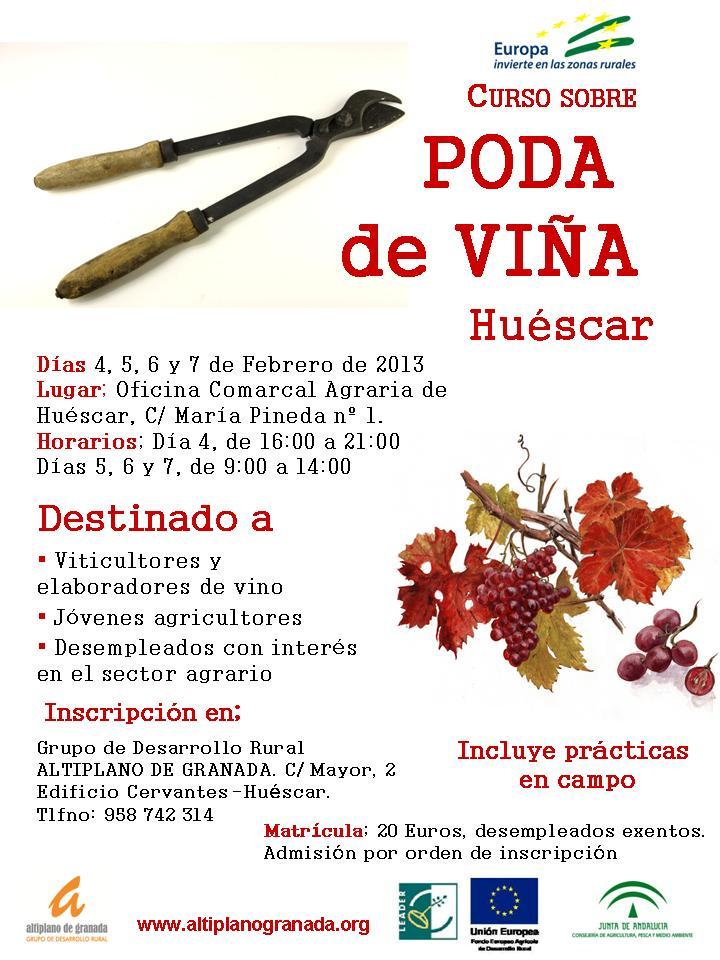 Mancomunidad de municipios comarca de hu scar curso sobre for Oficina comarcal agraria