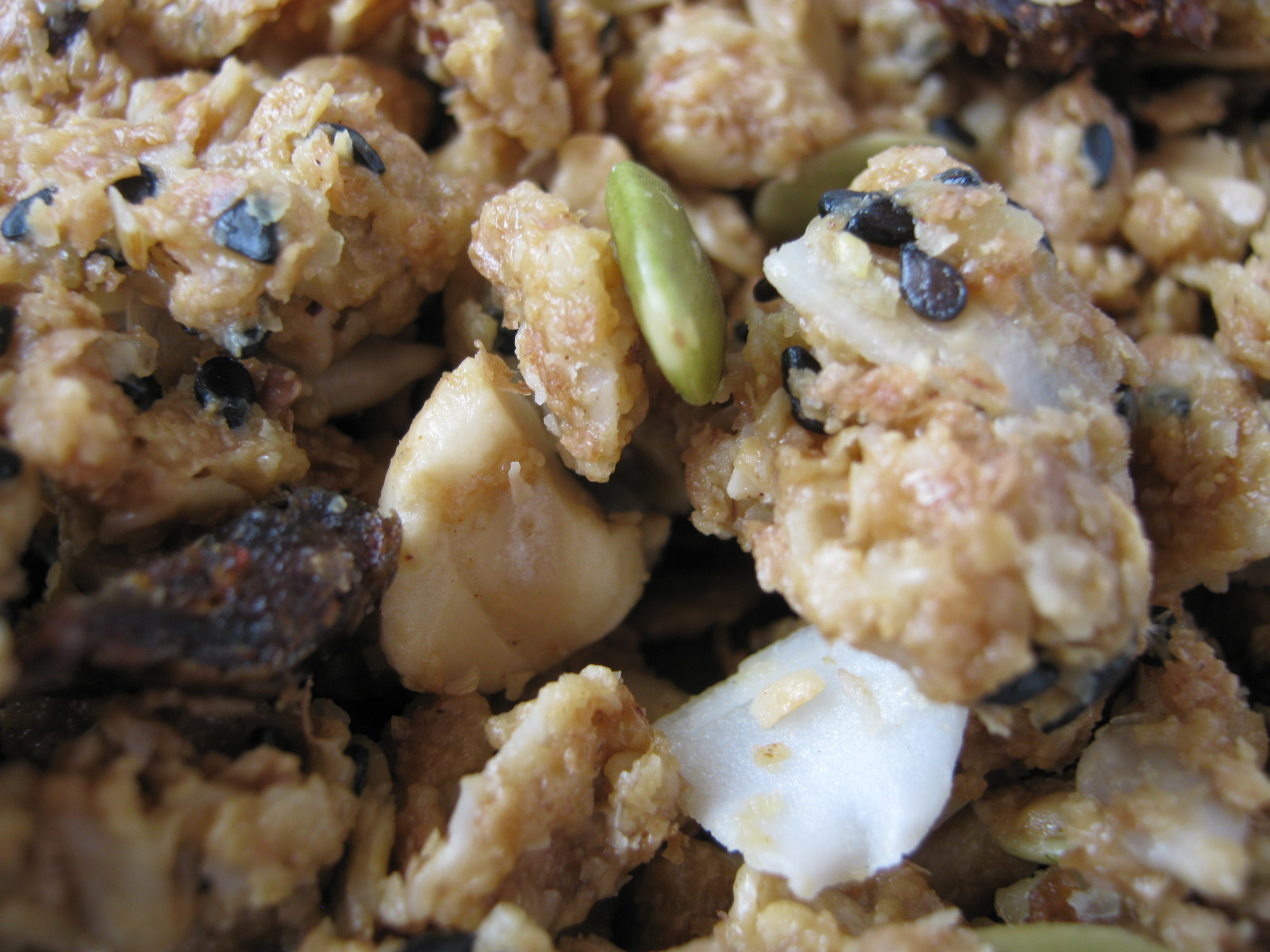 See Fit People: Cashew Ginger Granola with Dates