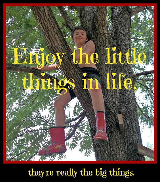 creative country sayings and inspirational quotes enjoy the little small things