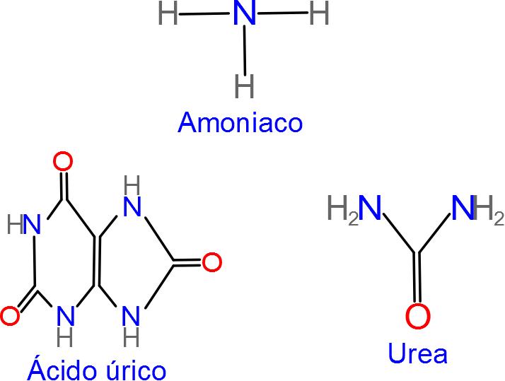 come abbassare l'acido urico nel sangue jugo naranja acido urico tengo acido urico y colesterol