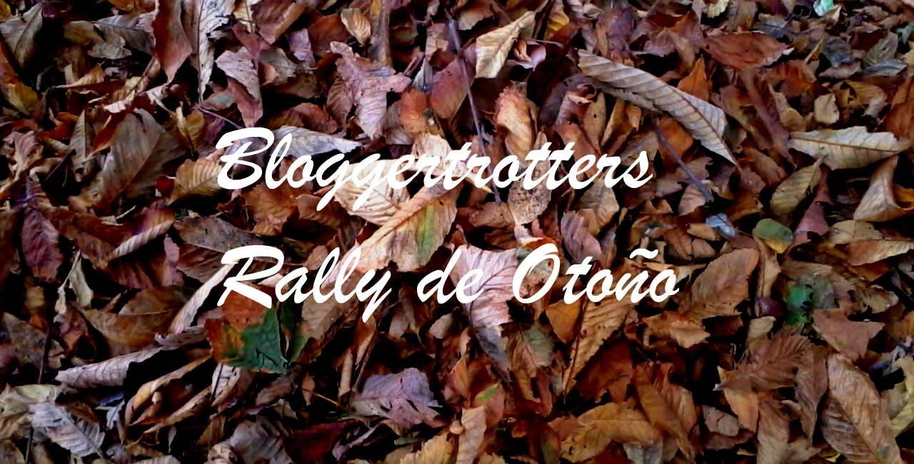 Bloggertrotters otoño hojas