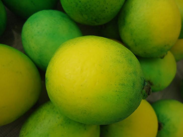 Especial Frutas para banho